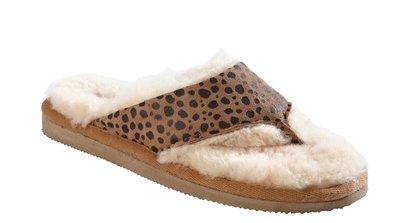 Shepherd slipper Anki Leopard
